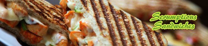 Healthy Scrumptious Sandwiches