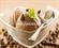 montina-ice-cream-karachi(1).jpg Image