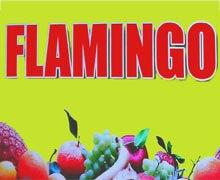 Flamingo Karachi Logo