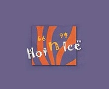 Hot n Ice Faisalabad Logo