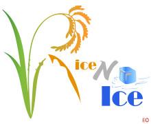 Rice N Ice Karachi Logo