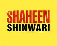 Shaheen Shinwari Restaurant Karachi Logo