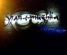 Shan-e-Mughlia Karachi Logo