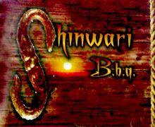 Shinwari B.B.Q Karachi Logo