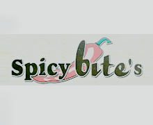 Spicy Bite Karachi Logo