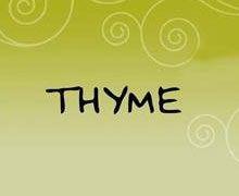 Thymes & Tarragon Karachi Logo
